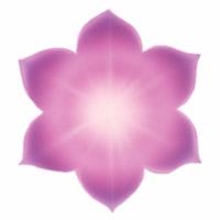 Le chakra du siège de l'âme correspond au 7e rayon, de couleur violet, situé entre le nombril et la base de la colonne vertébrale, relié aux organes d'élimination et de reproduction, destiné à exprimer la liberté, la transcendance et la justice.