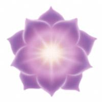Le chakra du plexus solaire correspond au 6e rayon, de couleur pourpre et or tacheté de rubis, situé au niveau du nombril, relié au système digestif et au foie, destiné à exprimer la paix, l'altruisme, la fraternité.